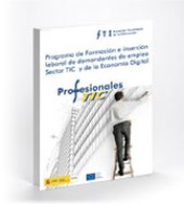 Programa Profesionales TIC